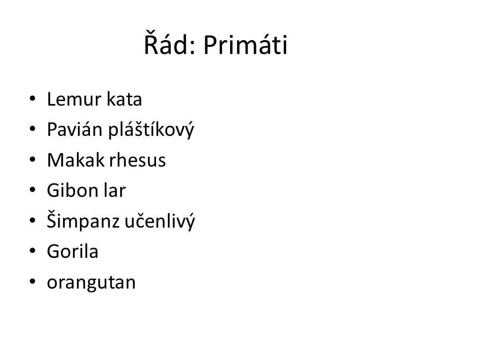 Řád: Primáti Lemur kata Pavián pláštíkový Makak rhesus Gibon lar Šimpanz učenlivý Gorila orangutan