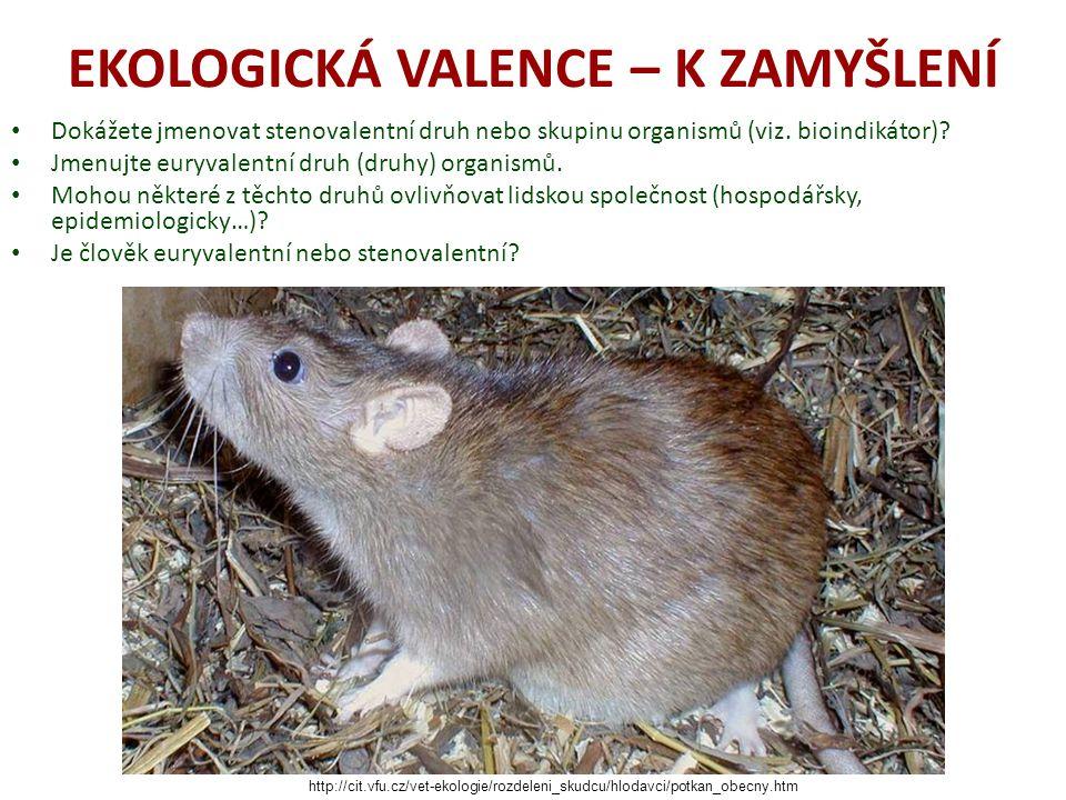 EKOLOGIE II.– ZDROJE PUCHNEROVÁ. Mineralogie. [online].