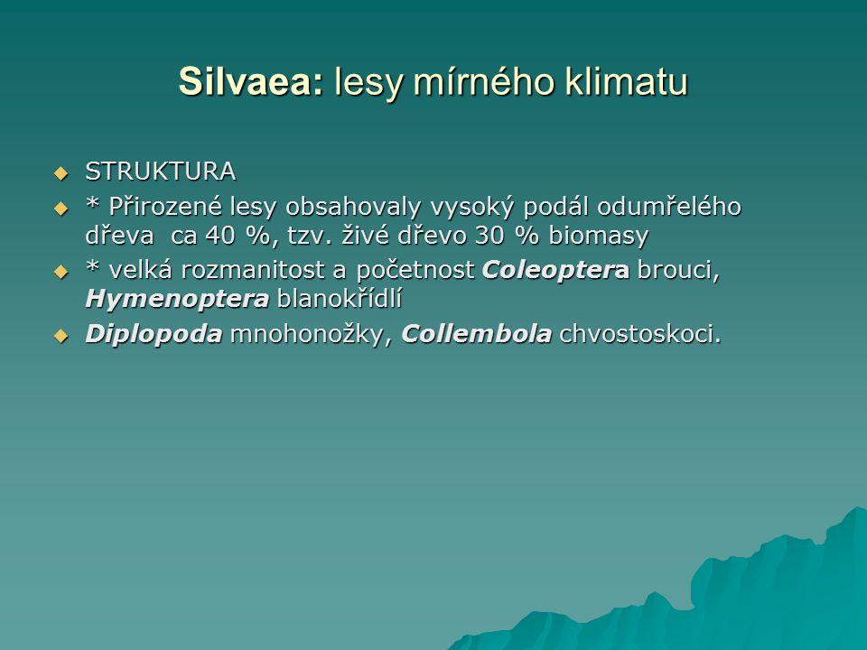Silvaea: lesy mírného klimatu  STRUKTURA  * Přirozené lesy obsahovaly vysoký podál odumřelého dřeva ca 40 %, tzv. živé dřevo 30 % biomasy  * velká