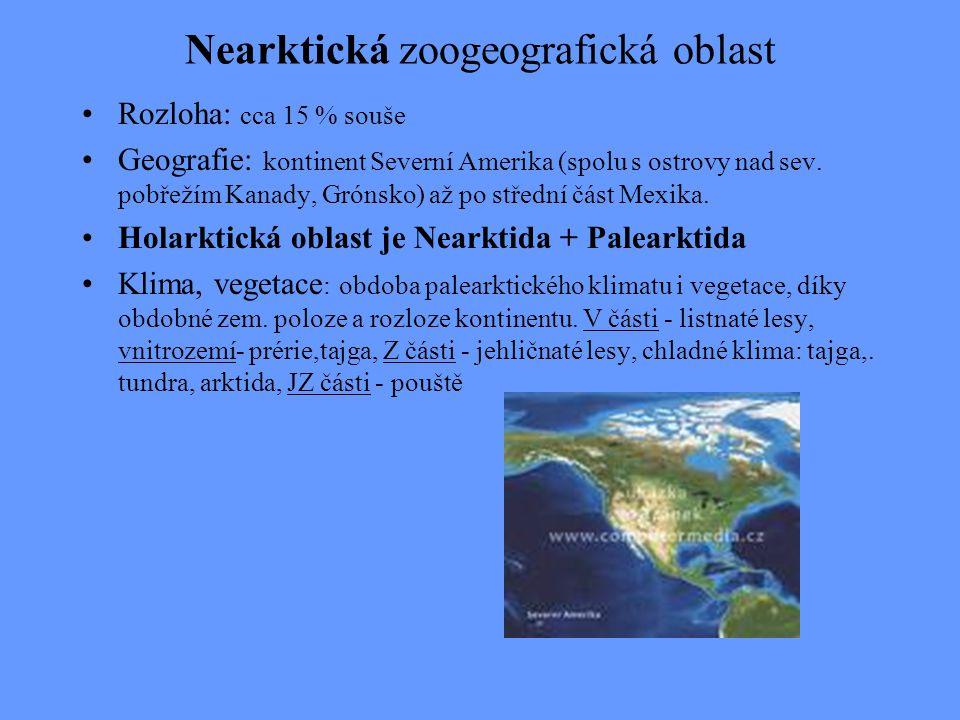 Nearktická zoogeografická oblast Rozloha: cca 15 % souše Geografie: kontinent Severní Amerika (spolu s ostrovy nad sev. pobřežím Kanady, Grónsko) až p