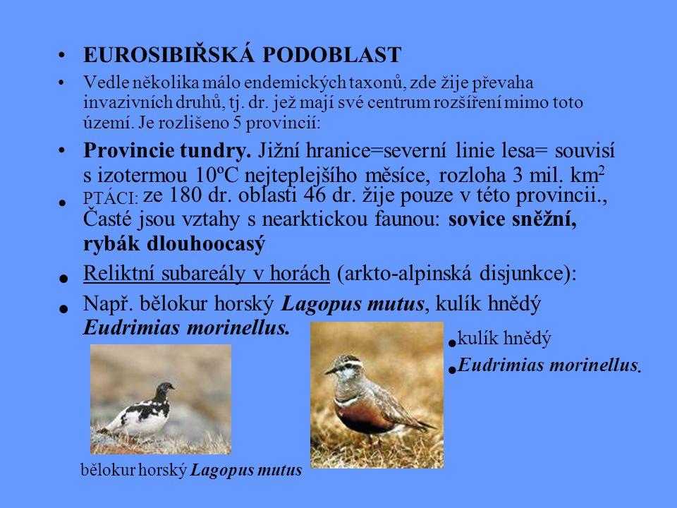 EUROSIBIŘSKÁ PODOBLAST Vedle několika málo endemických taxonů, zde žije převaha invazivních druhů, tj. dr. jež mají své centrum rozšíření mimo toto úz