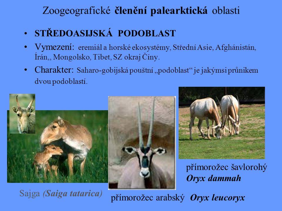 Zoogeografické členění palearktická oblasti STŘEDOASIJSKÁ PODOBLAST Vymezení: eremiál a horské ekosystémy, Střední Asie, Afghánistán, Írán,, Mongolsko