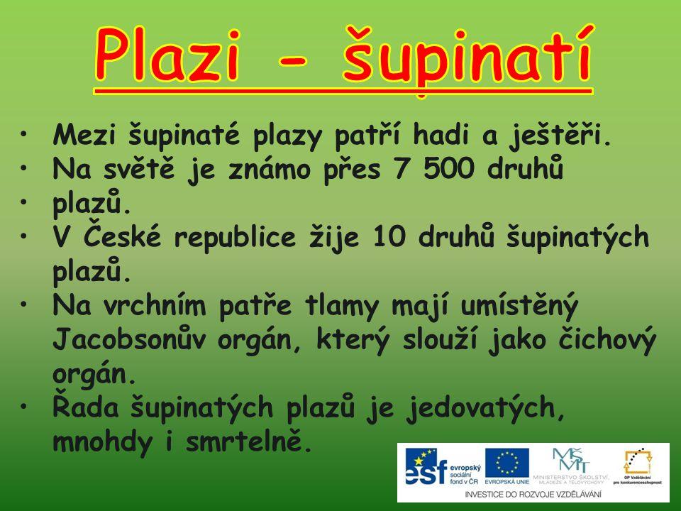 1.Soubor:Dolina Miętusia a2.jpg.In: Wikipedia: the free encyclopedia [online].