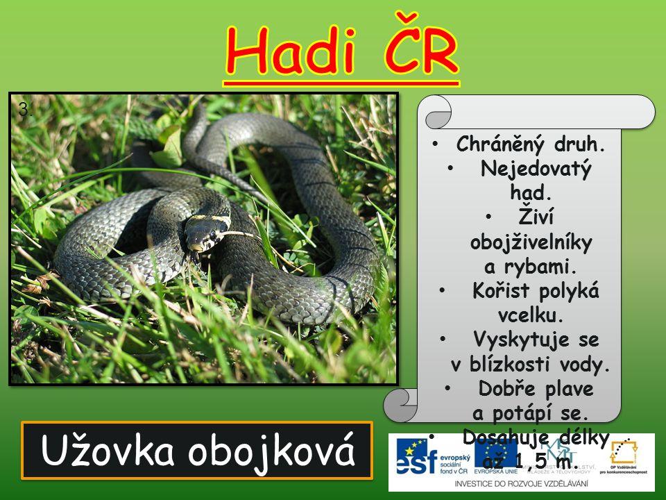 Užovka obojková Chráněný druh. Nejedovatý had. Živí obojživelníky a rybami. Kořist polyká vcelku. Vyskytuje se v blízkosti vody. Dobře plave a potápí