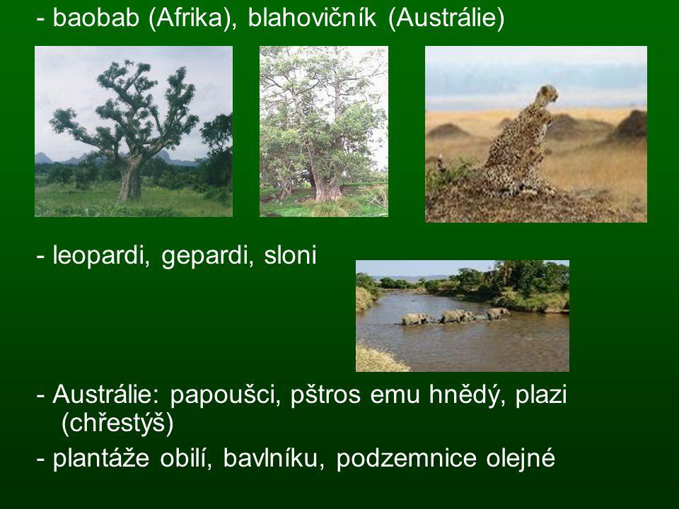 - baobab (Afrika), blahovičník (Austrálie) - leopardi, gepardi, sloni - Austrálie: papoušci, pštros emu hnědý, plazi (chřestýš) - plantáže obilí, bavl
