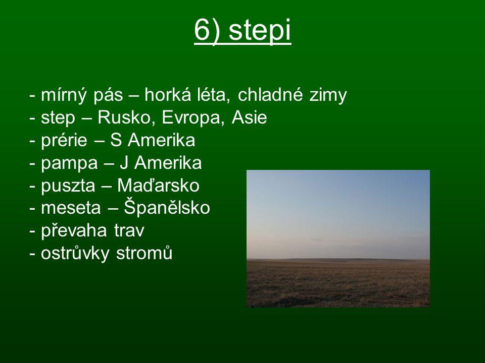 6) stepi - mírný pás – horká léta, chladné zimy - step – Rusko, Evropa, Asie - prérie – S Amerika - pampa – J Amerika - puszta – Maďarsko - meseta – Š