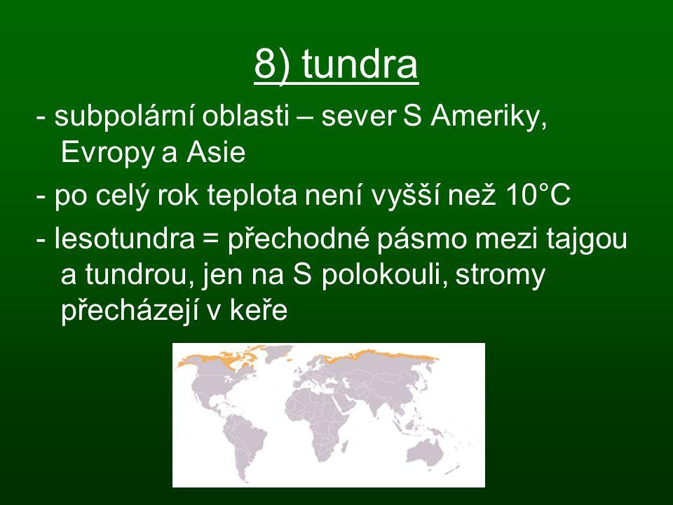 8) tundra - subpolární oblasti – sever S Ameriky, Evropy a Asie - po celý rok teplota není vyšší než 10°C - lesotundra = přechodné pásmo mezi tajgou a