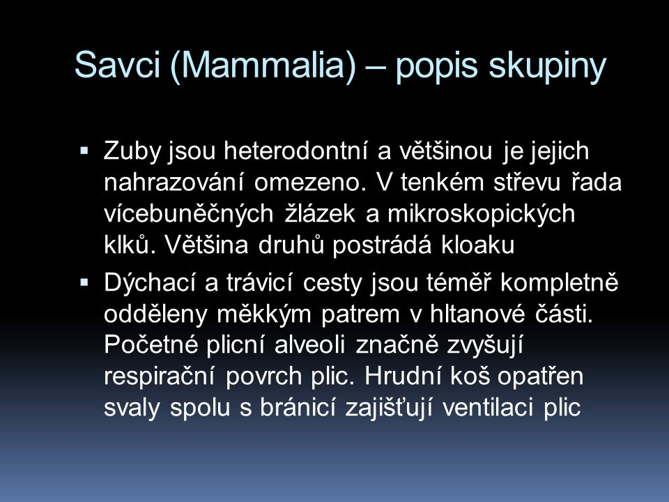 Savci (Mammalia) – popis skupiny  Zuby jsou heterodontní a většinou je jejich nahrazování omezeno. V tenkém střevu řada vícebuněčných žlázek a mikros