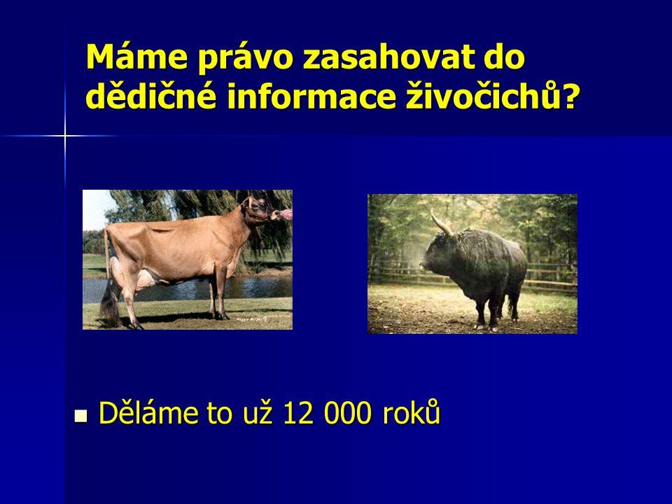 Máme právo zasahovat do dědičné informace živočichů? Děláme to už 12 000 roků Děláme to už 12 000 roků (
