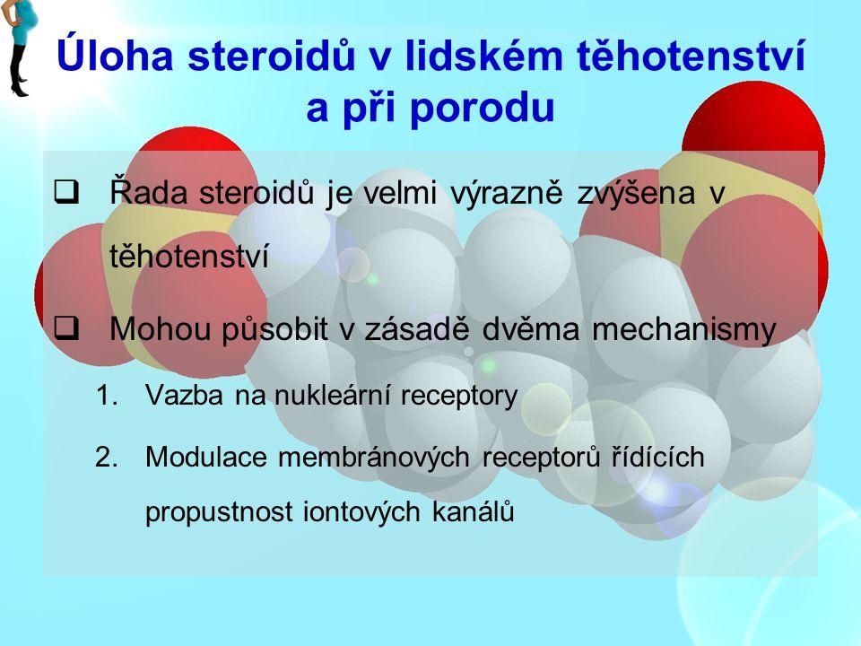 Úloha steroidů v lidském těhotenství a při porodu  Řada steroidů je velmi výrazně zvýšena v těhotenství  Mohou působit v zásadě dvěma mechanismy 1.V