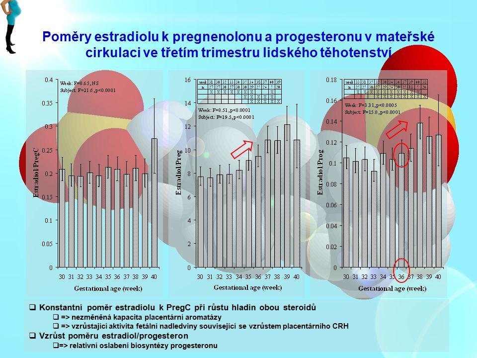 Poměry estradiolu k pregnenolonu a progesteronu v mateřské cirkulaci ve třetím trimestru lidského těhotenství  Konstantní poměr estradiolu k PregC př