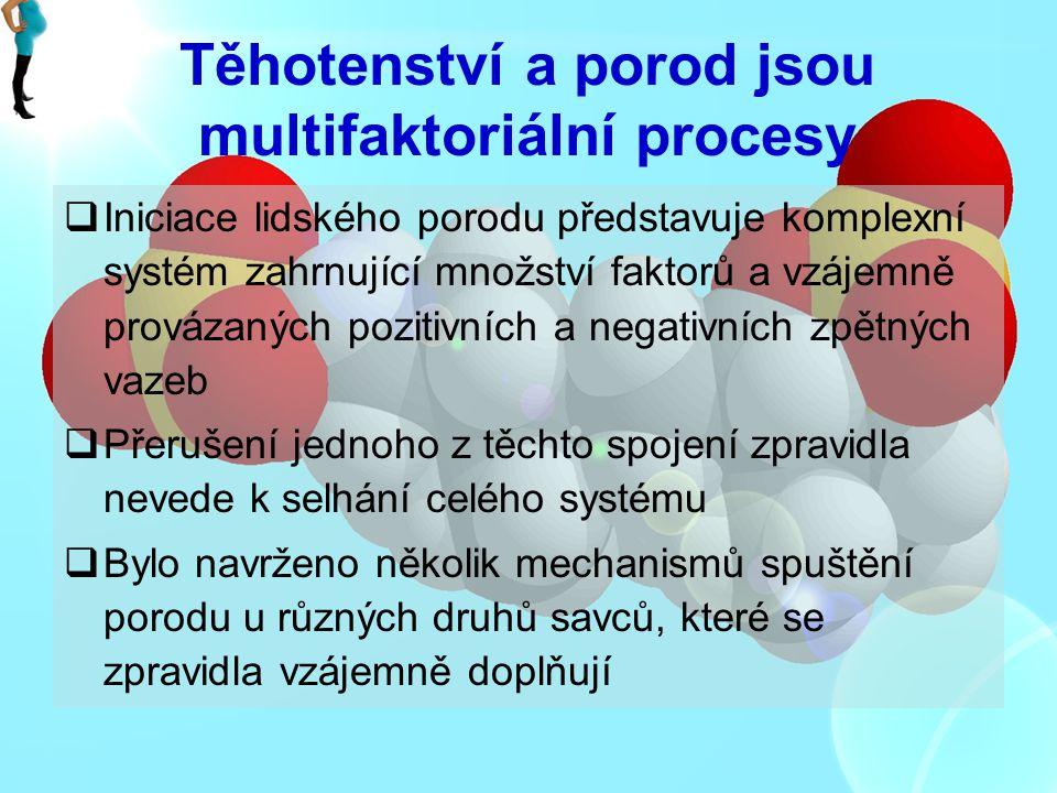 Těhotenství a porod jsou multifaktoriální procesy  Iniciace lidského porodu představuje komplexní systém zahrnující množství faktorů a vzájemně prová
