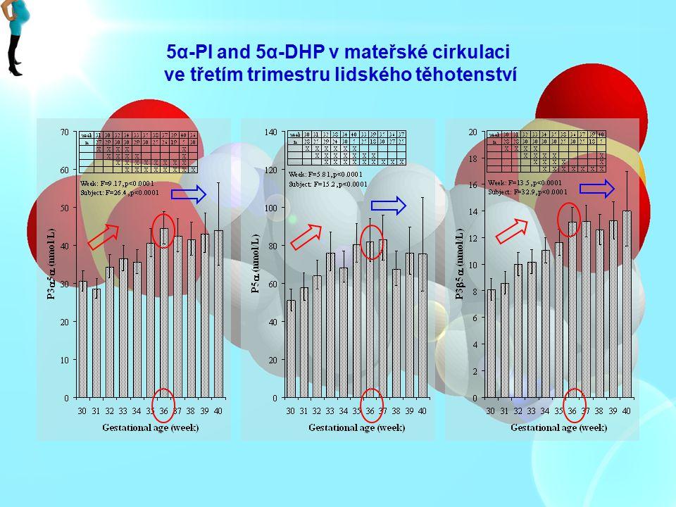 5α-PI and 5α-DHP v mateřské cirkulaci ve třetím trimestru lidského těhotenství