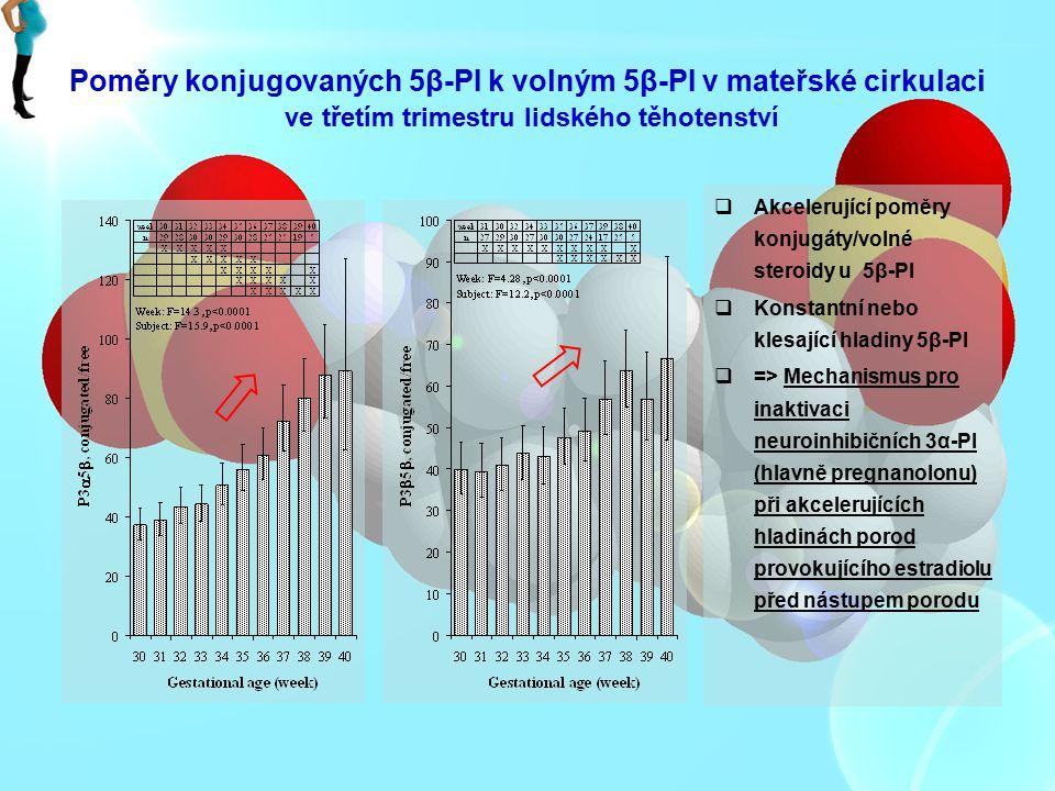 Poměry konjugovaných 5β-PI k volným 5β-PI v mateřské cirkulaci ve třetím trimestru lidského těhotenství  Akcelerující poměry konjugáty/volné steroidy