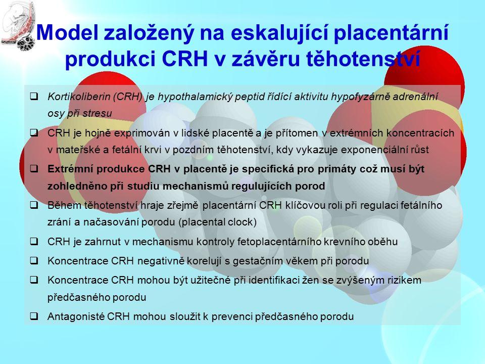 Model založený na eskalující placentární produkci CRH v závěru těhotenství  Kortikoliberin (CRH) je hypothalamický peptid řídící aktivitu hypofyzárně