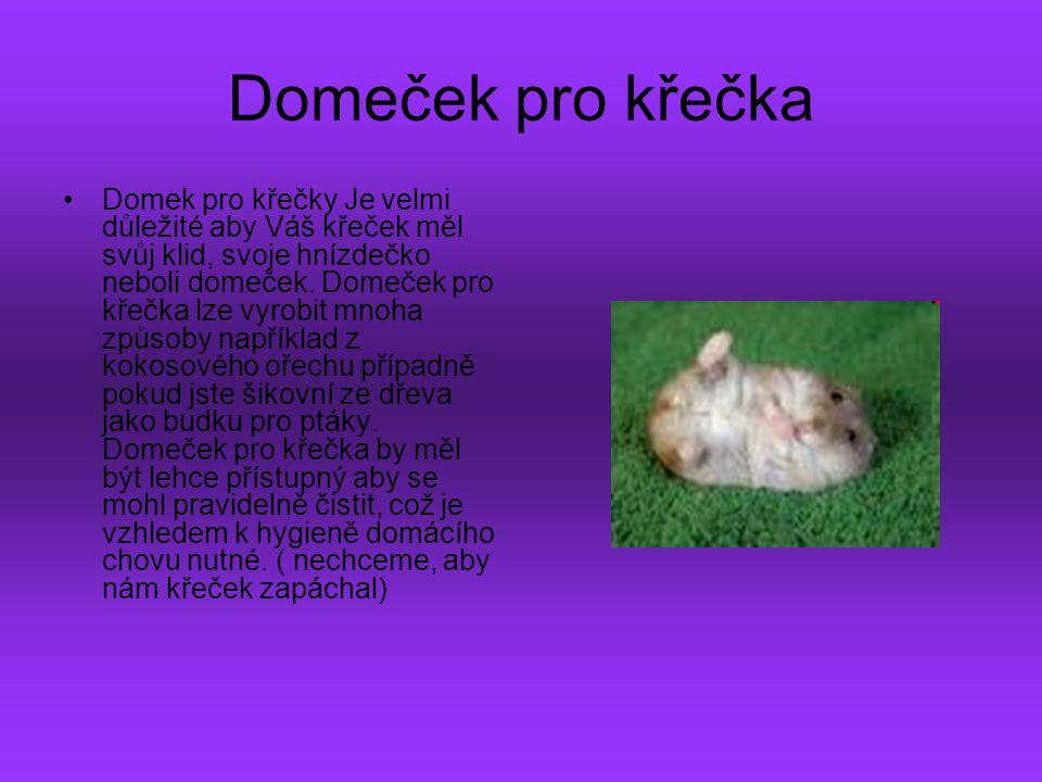 Domeček pro křečka Domek pro křečky Je velmi důležité aby Váš křeček měl svůj klid, svoje hnízdečko neboli domeček. Domeček pro křečka lze vyrobit mno