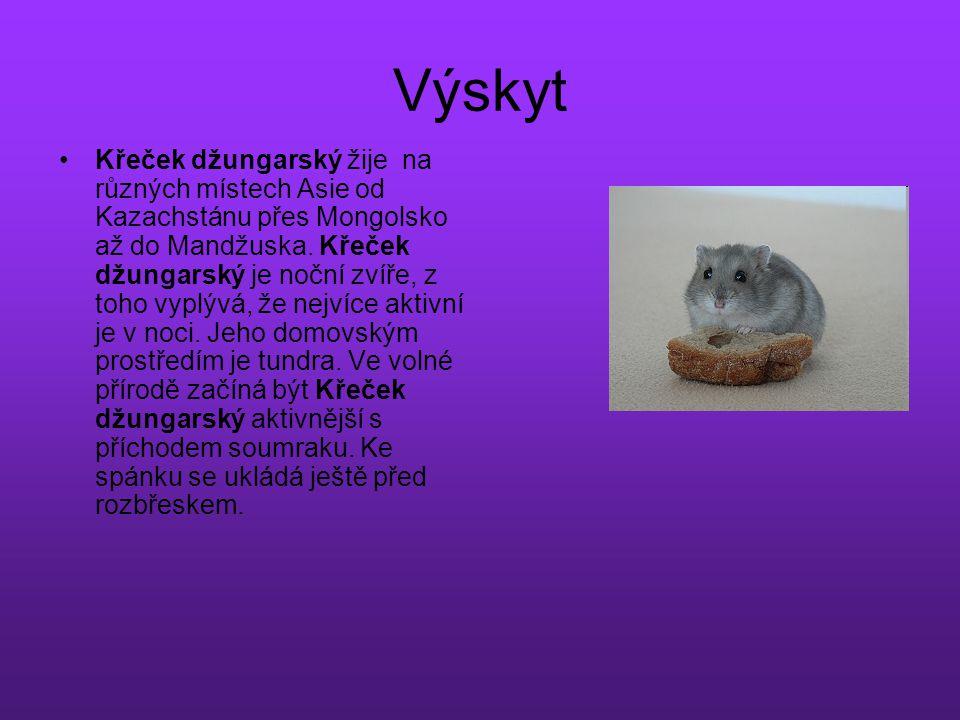 Výskyt Křeček džungarský žije na různých místech Asie od Kazachstánu přes Mongolsko až do Mandžuska. Křeček džungarský je noční zvíře, z toho vyplývá,