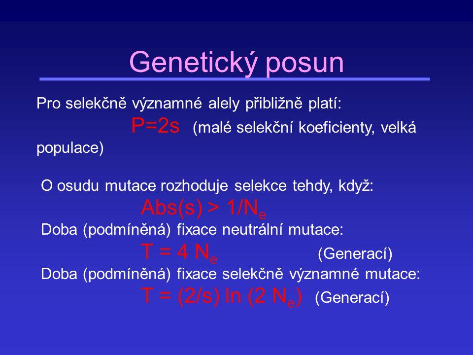0,5 0 1,0 frekvence mutace 0,5 0 1,0 frekvence mutace t t T T čas Průběh fixací mutací driftem velká populace malá populace
