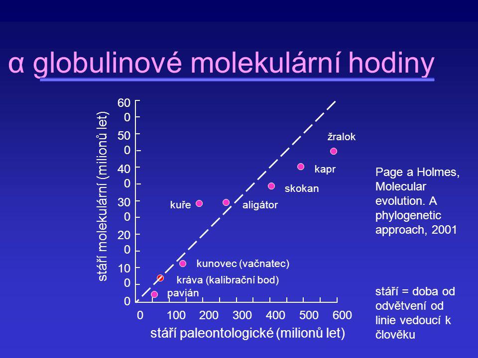 Substituční rychlost r = K(2T) (K -počet substitucí mezi dvěma druhy, T -doba od odvětvení obou druhů) Gen Nesynonymní (10 -9 ) Synonymní (10 -9 ) ribosomální protein S14 0,02 2,16 ribosomální protein S17 0,06 2,69 aktin 0,01 2,92 myosin 0,10 2,15 somatotropin 1,34 3,79 albumin 0,92 5,16 amylasa 0,63 3,42 Ig VH 1,10 4,76 interferon 3,06 5,50