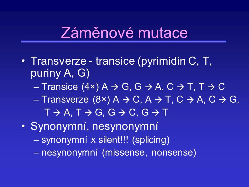 Relativní frekvence různých typů substitucí v kódující sekvenci Substitucí 1.