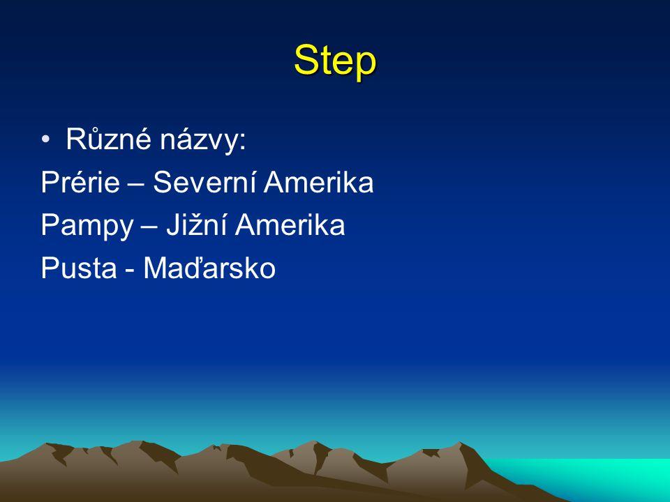 Step Různé názvy: Prérie – Severní Amerika Pampy – Jižní Amerika Pusta - Maďarsko