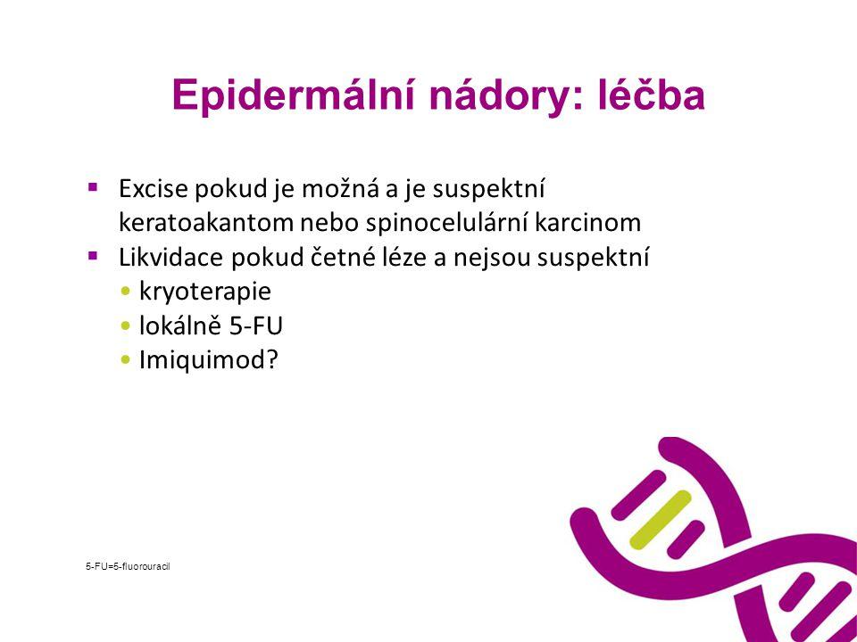 Epidermální nádory: léčba  Excise pokud je možná a je suspektní keratoakantom nebo spinocelulární karcinom  Likvidace pokud četné léze a nejsou susp