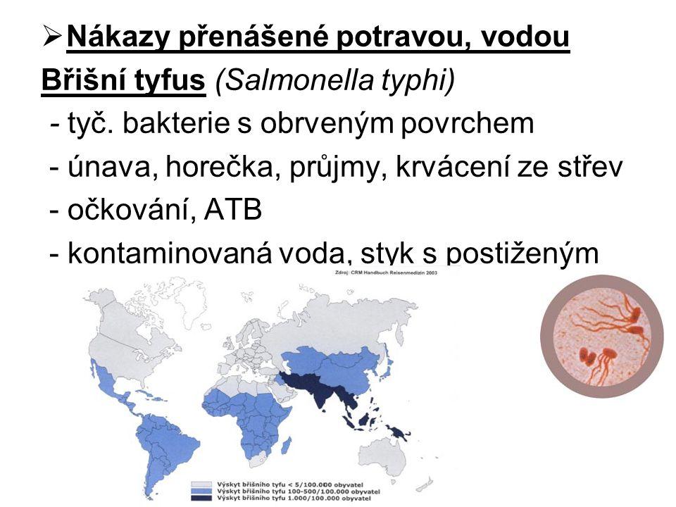  Nákazy přenášené potravou, vodou Břišní tyfus (Salmonella typhi) - tyč. bakterie s obrveným povrchem - únava, horečka, průjmy, krvácení ze střev - o