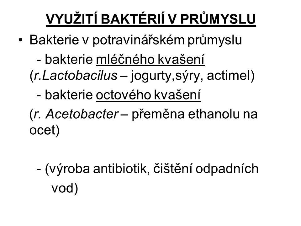 VYUŽITÍ BAKTÉRIÍ V PRŮMYSLU Bakterie v potravinářském průmyslu - bakterie mléčného kvašení (r.Lactobacilus – jogurty,sýry, actimel) - bakterie octovéh