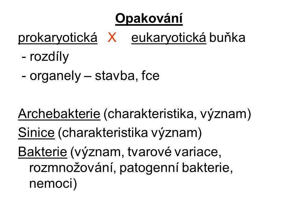 Opakování prokaryotická X eukaryotická buňka - rozdíly - organely – stavba, fce Archebakterie (charakteristika, význam) Sinice (charakteristika význam