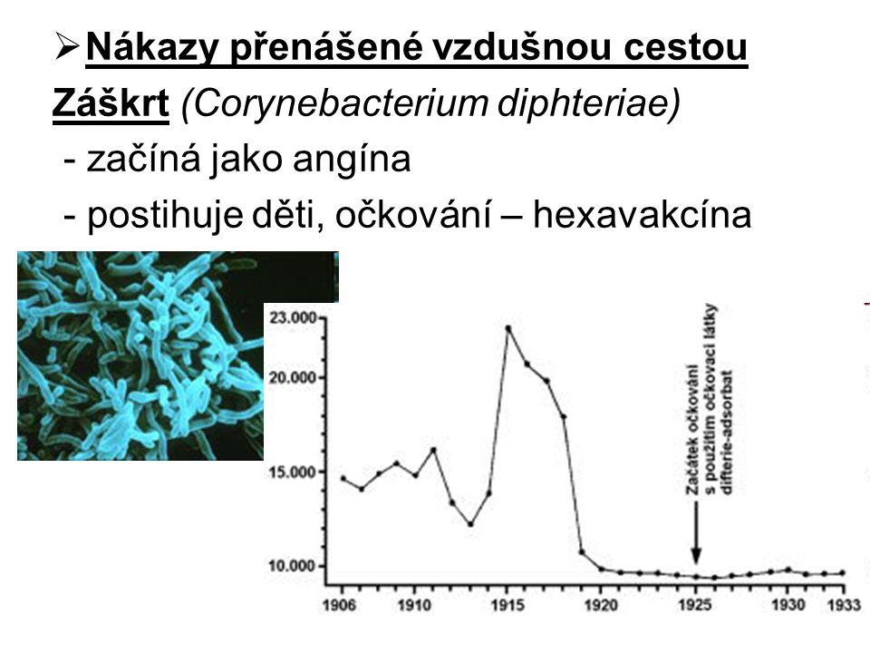  Nákazy přenášené vzdušnou cestou Záškrt (Corynebacterium diphteriae) - začíná jako angína - postihuje děti, očkování – hexavakcína