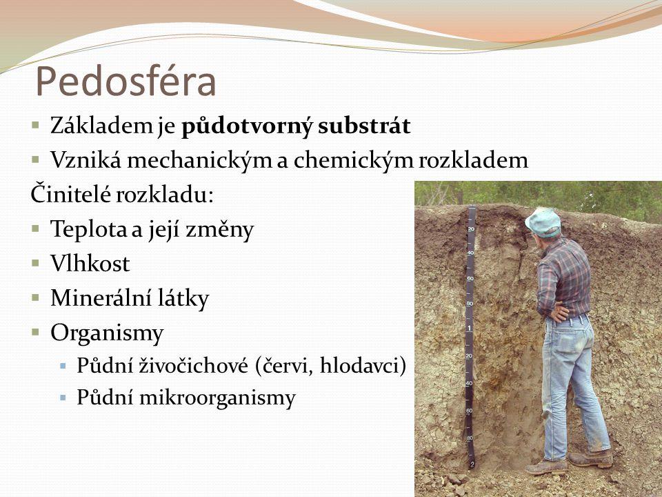 Pedosféra  Základem je půdotvorný substrát  Vzniká mechanickým a chemickým rozkladem Činitelé rozkladu:  Teplota a její změny  Vlhkost  Minerální