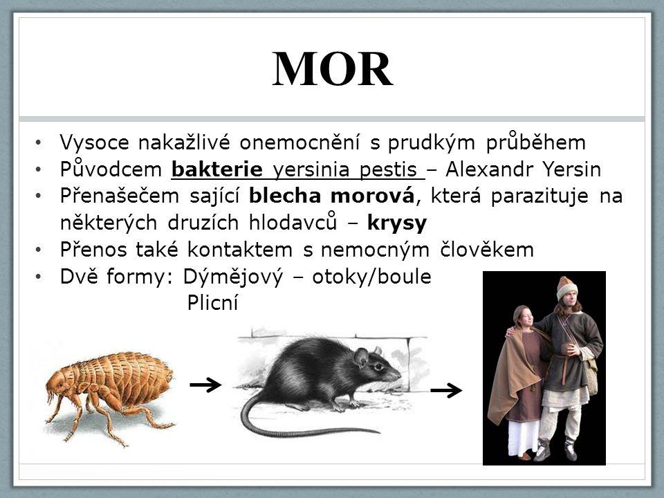 MOR Vysoce nakažlivé onemocnění s prudkým průběhem Původcem bakterie yersinia pestis – Alexandr Yersin Přenašečem sající blecha morová, která parazitu
