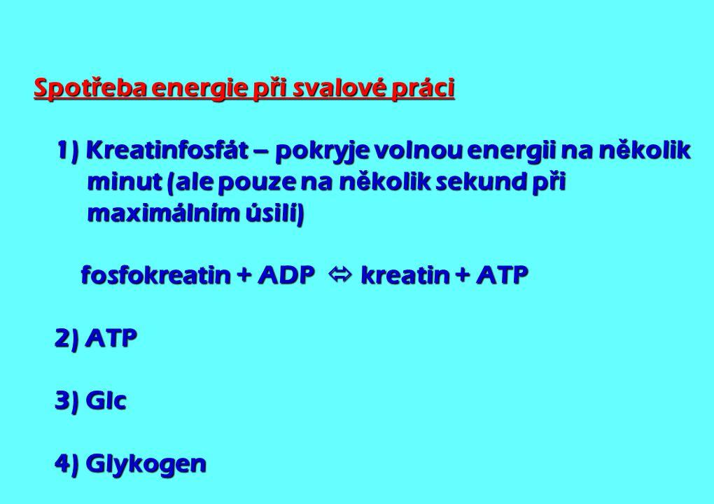 Spot ř eba energie p ř i svalové práci 1) Kreatinfosfát – pokryje volnou energii na n ě kolik minut (ale pouze na n ě kolik sekund p ř i maximálním ús