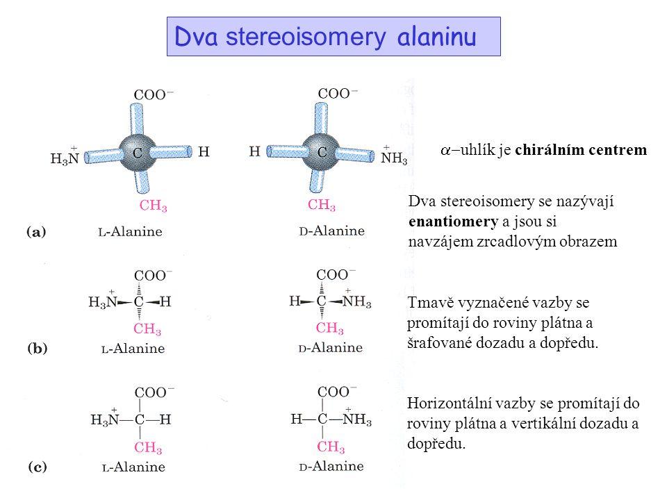 Dva stereoisomery alaninu  uhlík je chirálním centrem Dva stereoisomery se nazývají enantiomery a jsou si navzájem zrcadlovým obrazem Tmavě vyznačen