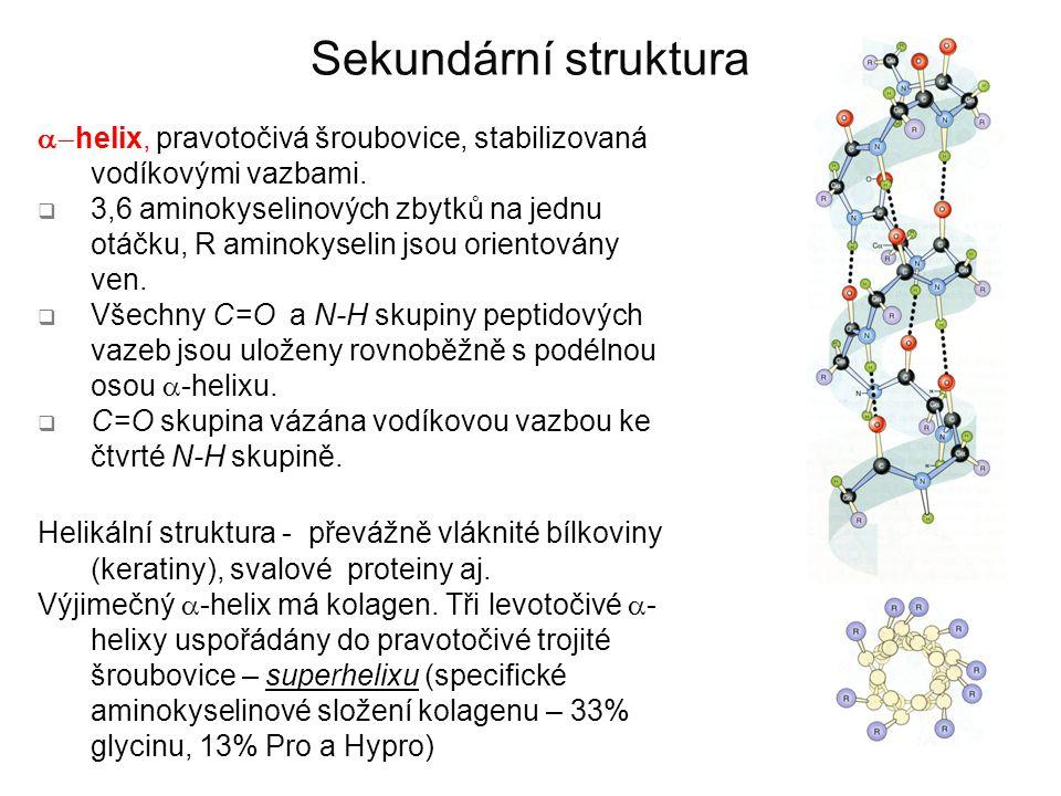 Sekundární struktura  helix, pravotočivá šroubovice, stabilizovaná vodíkovými vazbami.  3,6 aminokyselinových zbytků na jednu otáčku, R aminokyseli