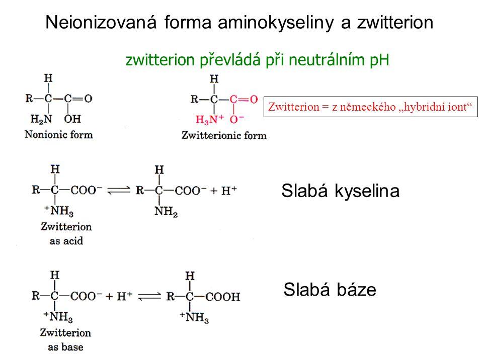 """Neionizovaná forma aminokyseliny a zwitterion zwitterion převládá při neutrálním pH Slabá kyselina Slabá báze Zwitterion = z německého """"hybridní iont"""""""