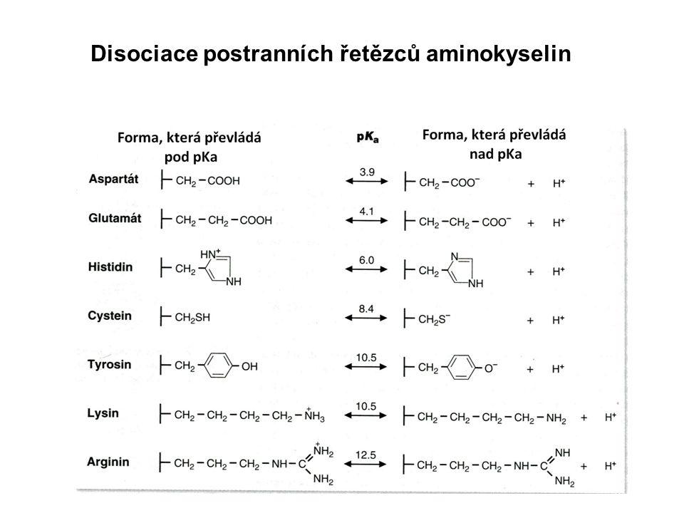 Poruchy skládání bílkovin Vlákna amyloidu jsou nerozpustné extracelulární útvary špatně složených polypeptidových řetězců (amyloidosa).