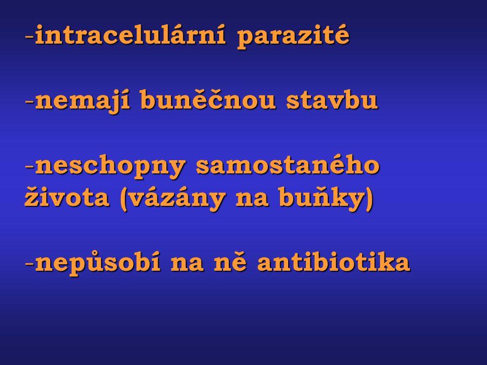 - intracelulární parazité - nemají buněčnou stavbu - neschopny samostaného života (vázány na buňky) - nepůsobí na ně antibiotika