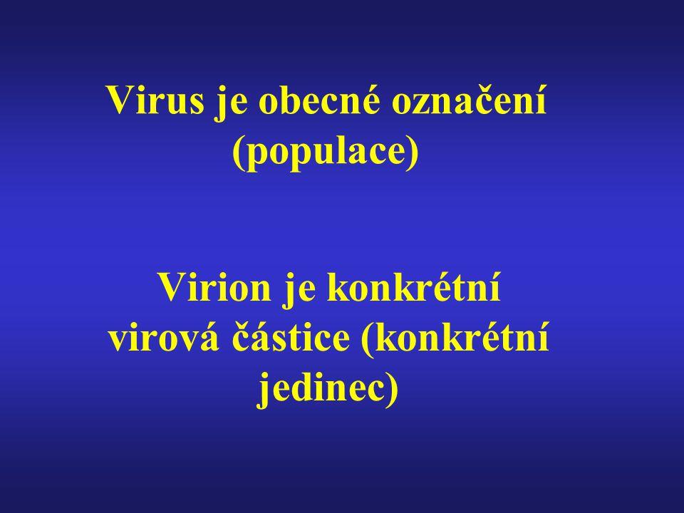 Virus je obecné označení (populace) Virion je konkrétní virová částice (konkrétní jedinec)