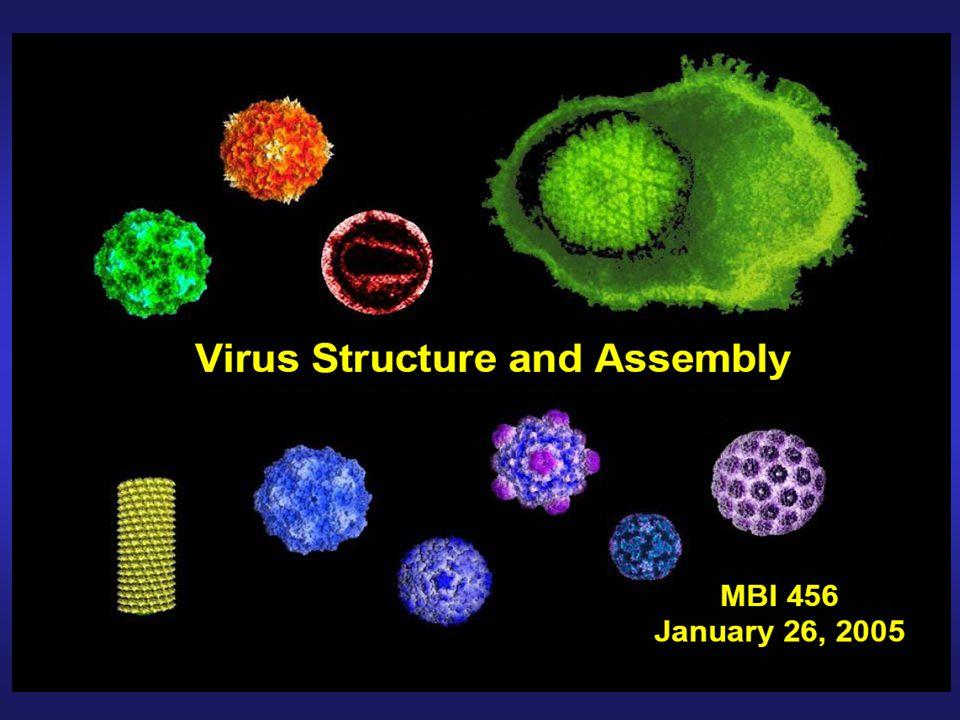 funkce virové kapsidy a obalu