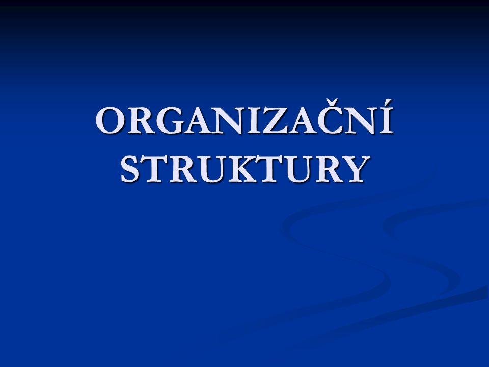 Formální a neformální stránka řídící struktury