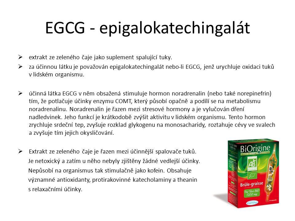 EGCG - epigalokatechingalát  extrakt ze zeleného čaje jako suplement spalující tuky.