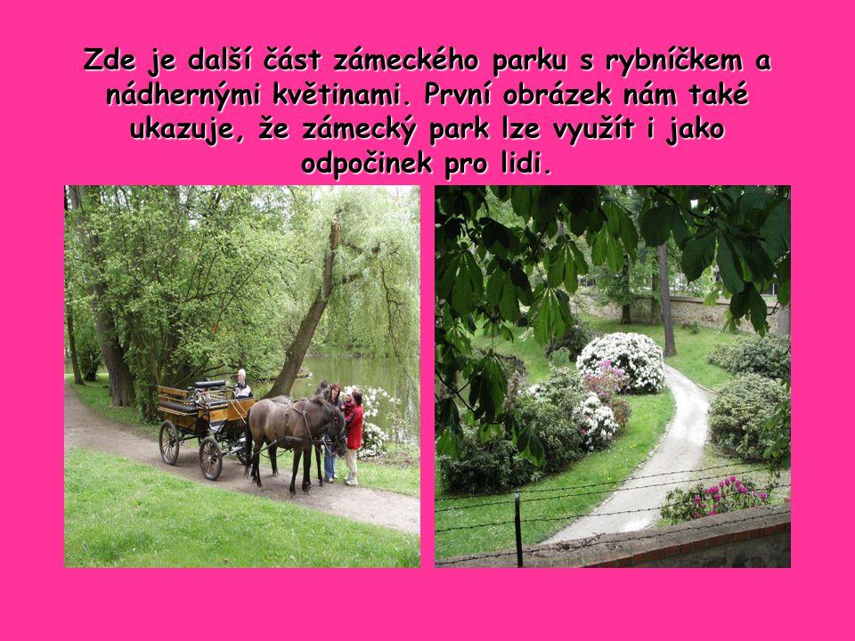 Zde je další část zámeckého parku s rybníčkem a nádhernými květinami.