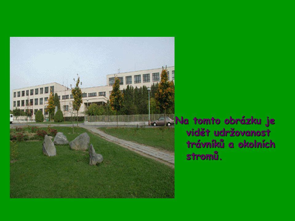 Zde můžeme vidět další udržovanou zeleň.Co však bohužel není vidět na této fotografii, je fontána obklopena keři.