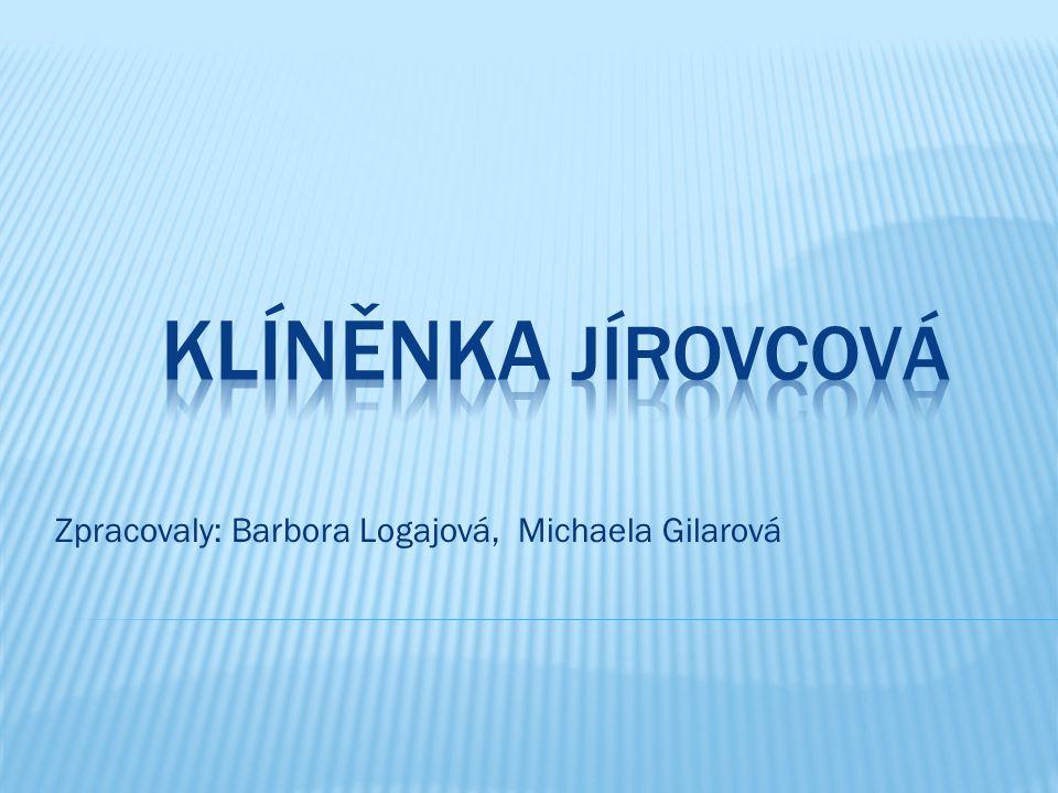 Zpracovaly: Barbora Logajová, Michaela Gilarová