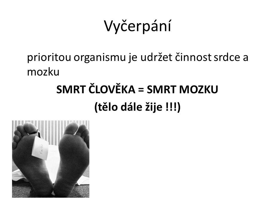 www.skialpnadhrobem.cz/guide