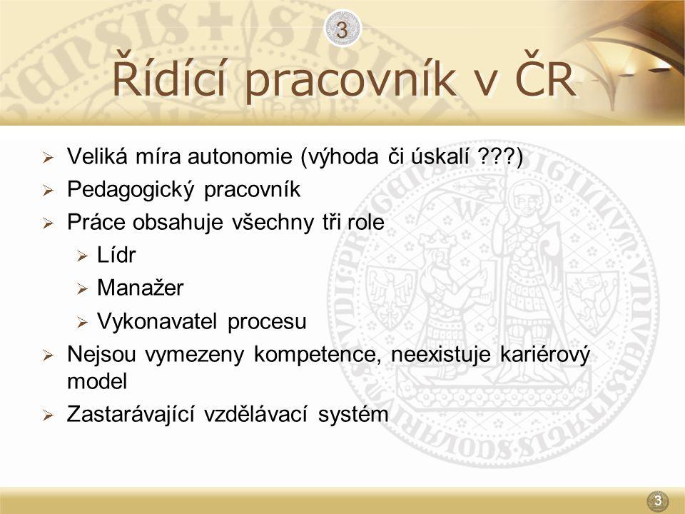 Řídící pracovník v ČR  Veliká míra autonomie (výhoda či úskalí ???)  Pedagogický pracovník  Práce obsahuje všechny tři role  Lídr  Manažer  Vyko
