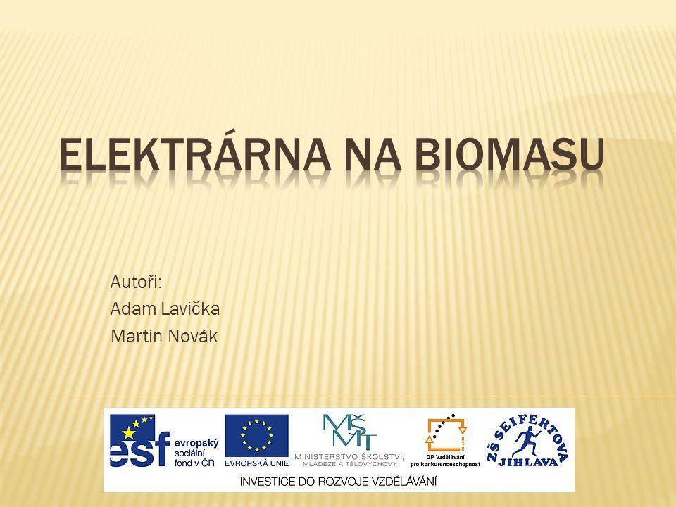 Autoři: Adam Lavička Martin Novák Nabídka pro ministerstvo průmyslu