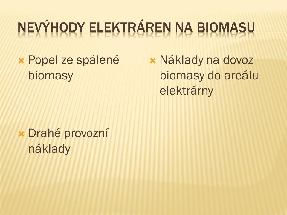  Popel ze spálené biomasy  Drahé provozní náklady  Náklady na dovoz biomasy do areálu elektrárny