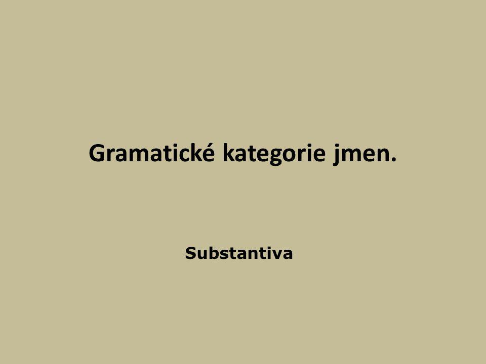 Gramatické kategorie jmen. Substantiva